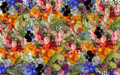 Flowers and Colors are Synonymous with Emotions