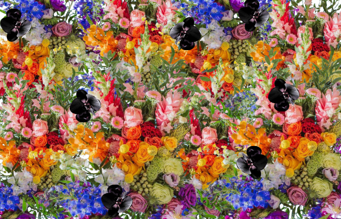 """""""Flowers and Colors are Synonymous with Emotions"""""""